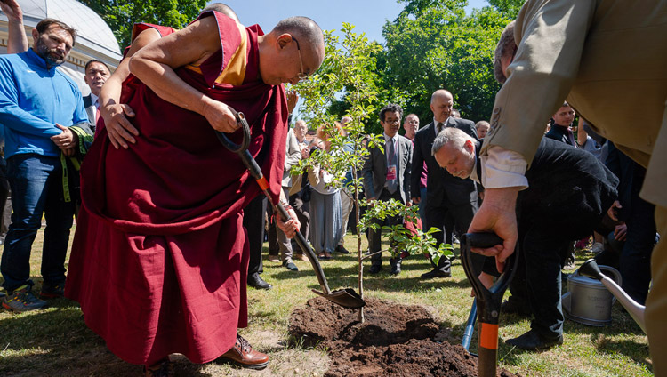 His Holiness the Dalai Lama planting a sapling to symbolize friendship between Lithuania and Tibet at Tibet Square in Vilnius, Lithuania on June 13, 2018. Photo by Tenzin Choejor