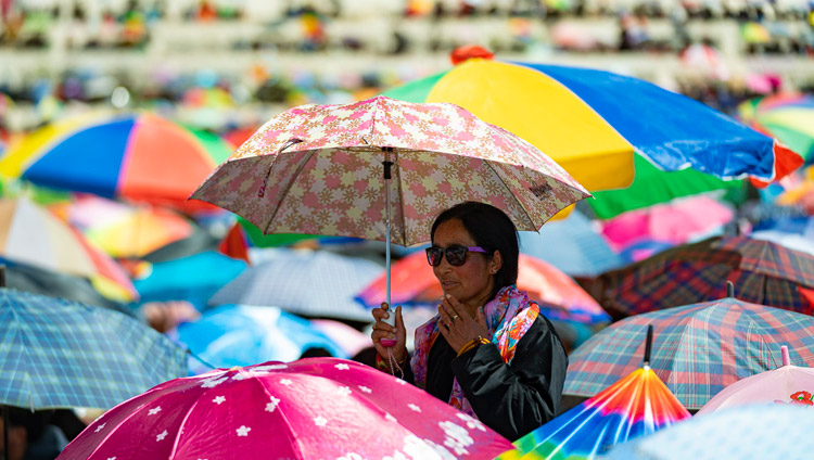 A member of the crowd looking over the sea of umbrellas to see His Holiness the Dalai Lama on the first day of his two day teaching in Leh, Ladakh, J&K, India on July 30, 2018. Photo by Tenzin Choejor